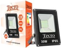 Фото - Прожектор / светильник Tecro TL-FL-30B