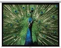 Проекционный экран Grandview Cyber Manual 146x110