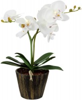 Настольная лампа Globo FlowerPower 28002