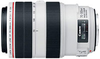 Объектив Canon EF 70-300mm f/4.0-5.6L IS USM