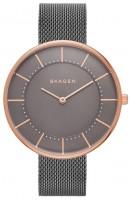 Фото - Наручные часы Skagen SKW2584