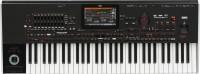 Синтезатор Korg Pa4X-61 Oriental