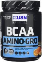Фото - Аминокислоты USN BCAA Amino-Gro 300 g