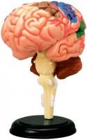3D пазл 4D Master Human Brain Anatomy Model 26056