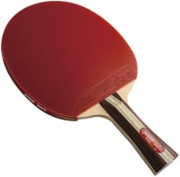 Фото - Ракетка для настольного тенниса DHS R3002