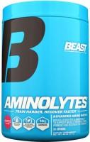 Фото - Аминокислоты Beast Aminolytes 413 g