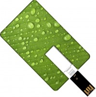 USB Flash (флешка) GOODRAM Plastic Credit Card 8Gb