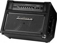 Гитарный комбоусилитель Traynor DB300T