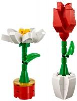 Фото - Конструктор Lego Flower Display 40187