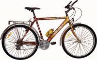 Велосипед Ardis Santana CTB 24