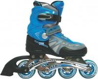 Роликовые коньки Extreme Motion EM-001