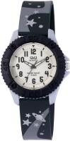 Наручные часы Q&Q VQ96J013Y