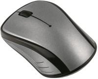 Мышь ACME MW-13