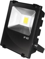 Фото - Прожектор / светильник EUROELECTRIC LED-FLR-COB-10