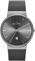 Наручные часы Skagen SKW6108