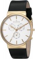 Наручные часы Skagen SKW6143