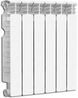 Радиатор отопления Fondital Astor S5