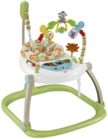 Ходунки Fisher Price CHN38