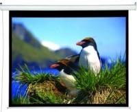 Проекционный экран Draper Accuscreen Electric 4:3 244x183