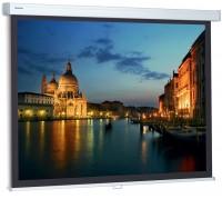 Проекционный экран Projecta ProScreen 4:3 280x213