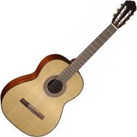 Гитара Cort AC100