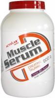 Фото - Протеин Activlab Muscle Serum 0.9 kg