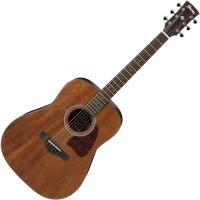 Гитара Ibanez AW54