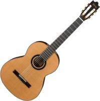 Гитара Ibanez GA15
