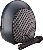 Аудиосистема Soundking SKWH065U