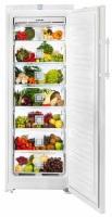 Фото - Холодильник Liebherr B 2756
