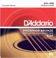 Струны DAddario Phosphor Bronze 13-56