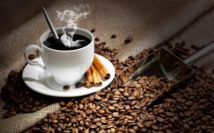 Идеальный американо в домашних условиях: ТОП-5 капельных кофеварок