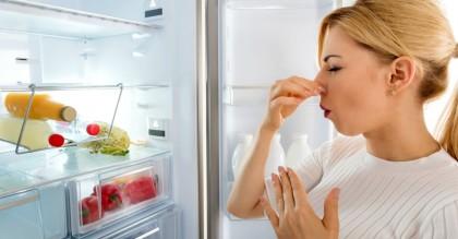 Как убрать запах с холодильника