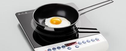 ТОП-5: плиты для дачи или загородного жилья
