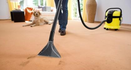Влажная уборка дома: 5 лучших моющих пылесосов