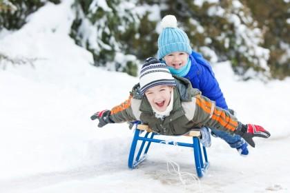 Готовим санки к зиме: семерка лучших саней для детей
