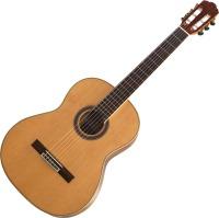 Гитара Virginia CC-20