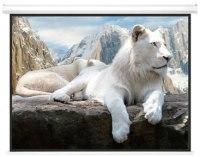 Проекционный экран Charmount Electric Screen 172x130