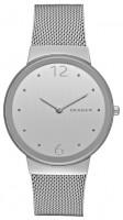 Наручные часы Skagen SKW2380