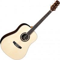 Гитара SX DG50
