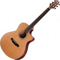 Гитара Walden G1070CEQ
