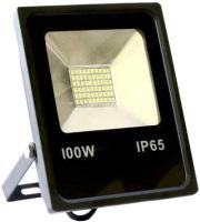Фото - Прожектор / светильник Biom 100W SMD-100-Slim