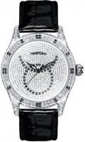 Наручные часы Temporis T027LS.02