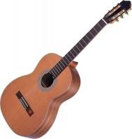Гитара Strunal 670