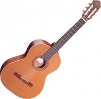Гитара Ortega R180