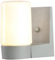Прожектор / светильник ARTE LAMP Spasso A8058AL-1