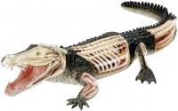 3D пазл 4D Master Crocodile Anatomy Model 26114
