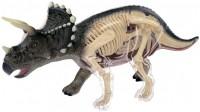 Фото - 3D пазл 4D Master Tricerators Anatomy Model 26093