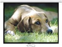 Проекционный экран Logan PRMC 200x112