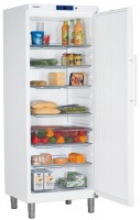Холодильник Liebherr GKv 6410 белый